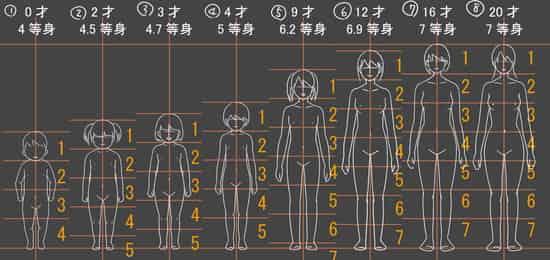 幼児と成年の体格の比較画像